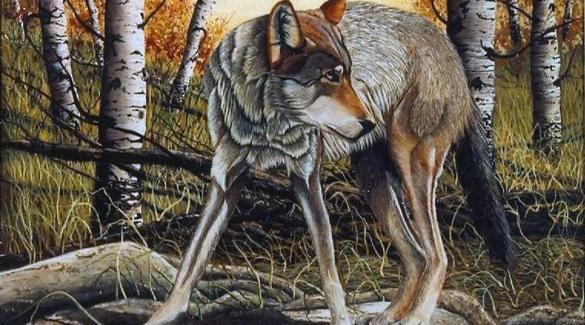 Saskatchewan Nac Artists Brenda Angelstad