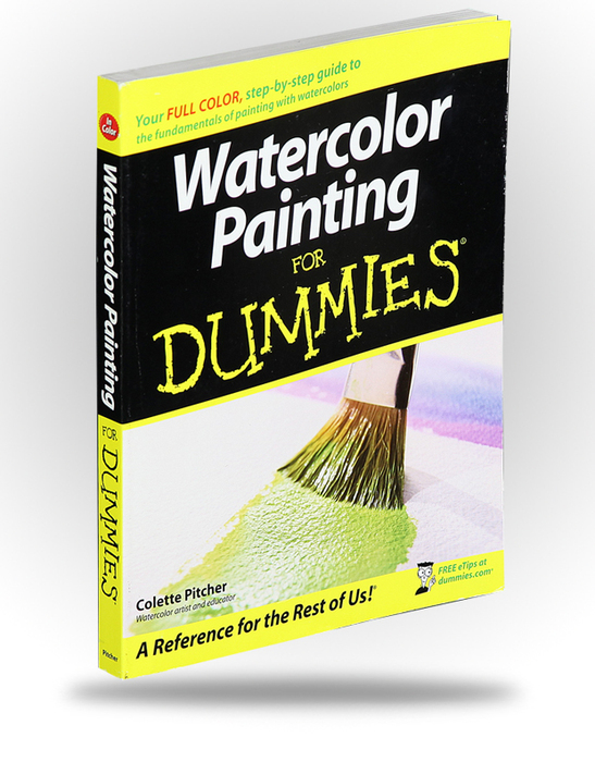 Saskatchewan Nac Store Watercolour Painting For Dummies